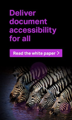 Deliver document accessibility for all. Read the white paper