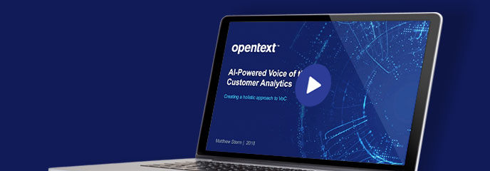AI-Powered Voice of the Customer Analytics