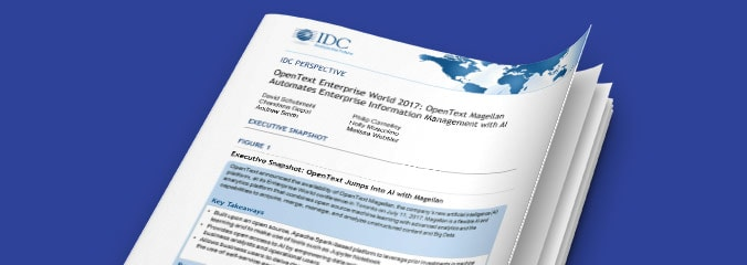 IDC Perspective 2018 report thumbnail