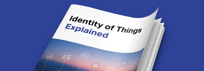 Identity of Things Explained