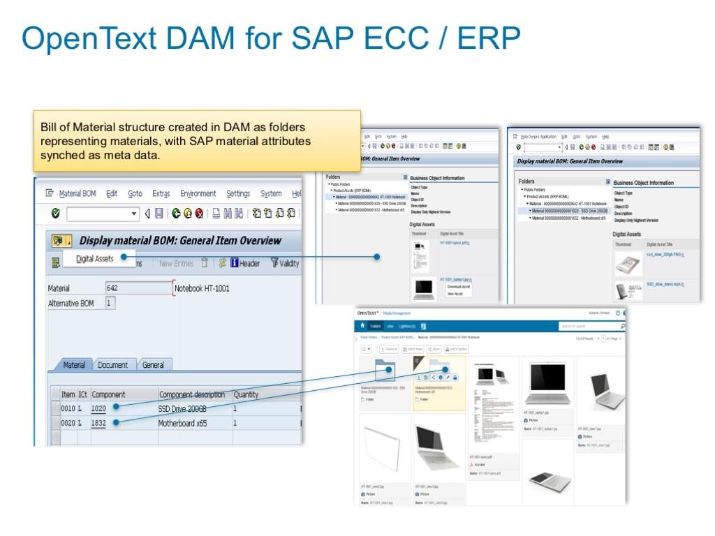 OpenText Digital Asset Management for SAP® Solutions