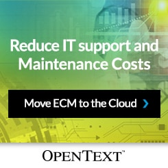 Reduce IT Support and Maintenance Costs