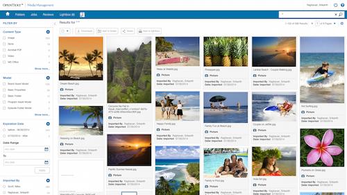 OpenText Media Management User interface