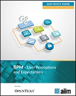 BPM User Perceptions