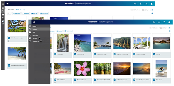 OpenText Media Management User Interface