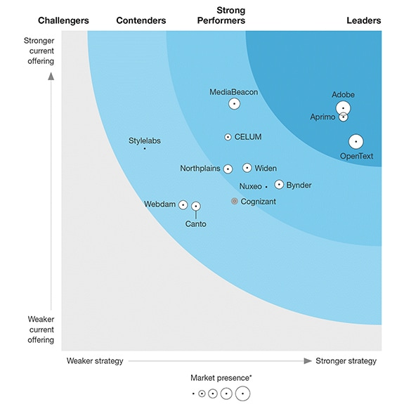 Forrester graphic